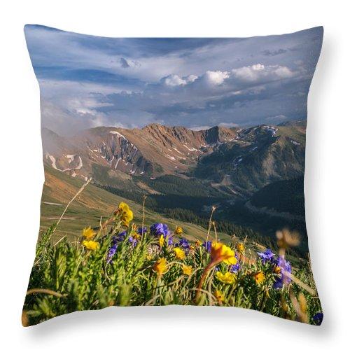 Wildflowers Throw Pillow featuring the photograph Loveland Pass Summer by Michael J Bauer