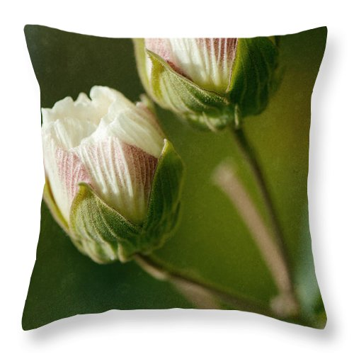 Flower Throw Pillow featuring the photograph Lovely Twins by Yew Kwang