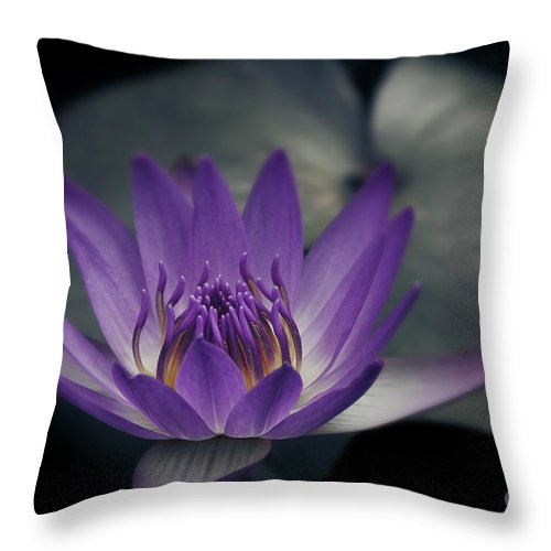 Throw Pillow featuring the photograph Love's Secret by Sharon Mau