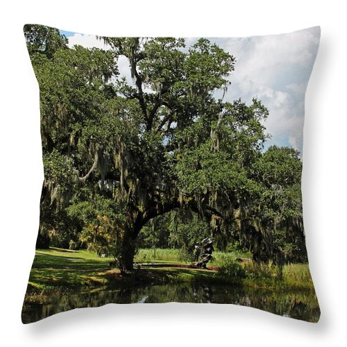 Low Country Throw Pillow featuring the photograph Low Country Beauty II by Suzanne Gaff