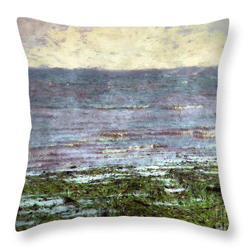 Ocean Throw Pillow featuring the painting Low Tide At Sunrise by RC DeWinter