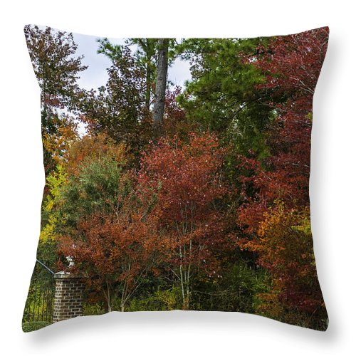 Lowcountry Throw Pillow featuring the photograph Lowcountry Fall Color by Dale Powell