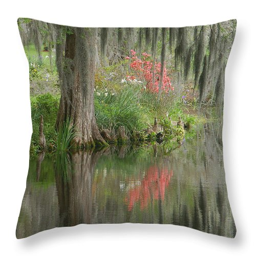 Lowcountry Throw Pillow featuring the photograph Lowcountry Series I by Suzanne Gaff