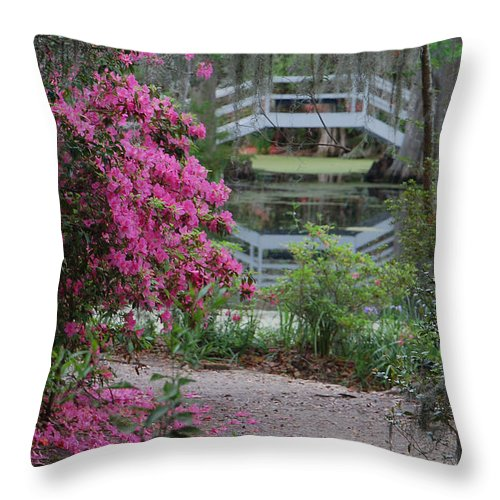 Garden Throw Pillow featuring the photograph Lowcountry Series II - Ode To Monet by Suzanne Gaff