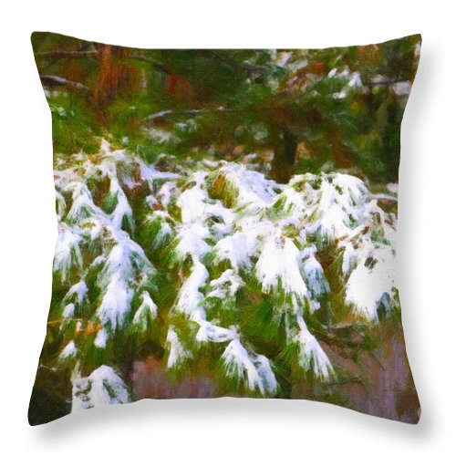 Snow Throw Pillow featuring the photograph Lowcountry Snow by Dale Powell