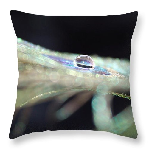 Feather Throw Pillow featuring the photograph Lucid Dream by Krissy Katsimbras