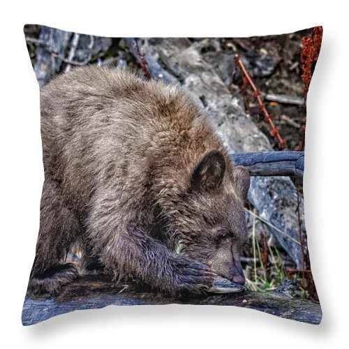 Wildlife Throw Pillow featuring the photograph Lunch Break by Jim Thompson