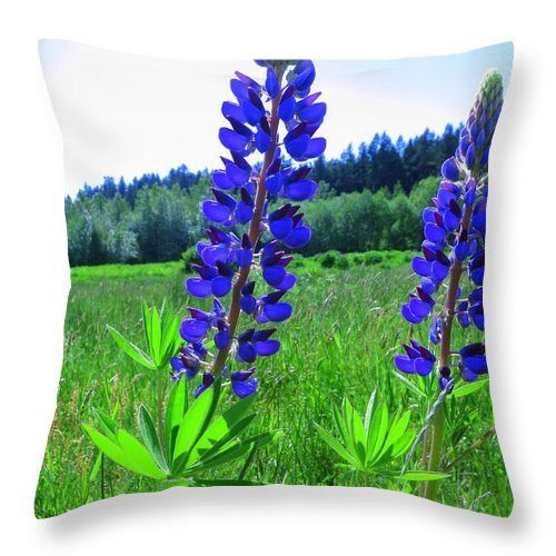 Lupine Throw Pillow featuring the photograph Lupine Flower by Lena Photo Art