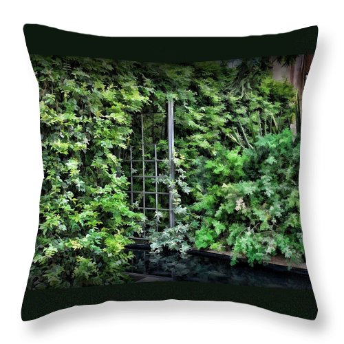 Scenic Throw Pillow featuring the photograph Lush by Joyce Baldassarre