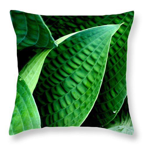 Hosta Throw Pillow featuring the photograph Lush by Valerie Fuqua