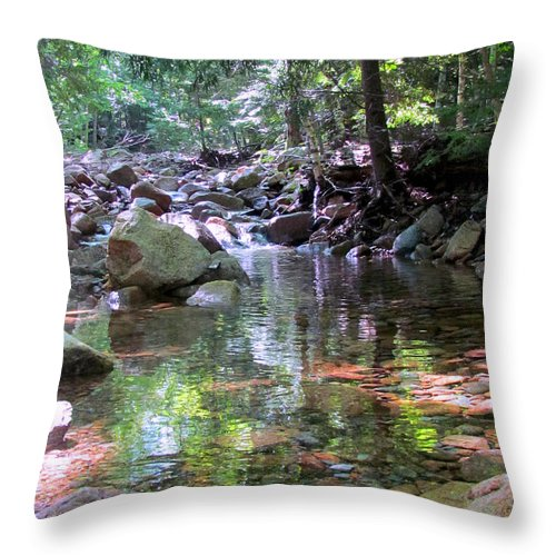 Gorge Trail Throw Pillow featuring the photograph Magic Pool by Elizabeth Dow