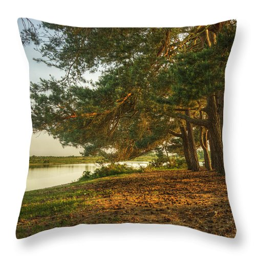 Fantasy Throw Pillow featuring the photograph Magical Fantasy Style Forest Scene With Lake During Sunset by Matthew Gibson