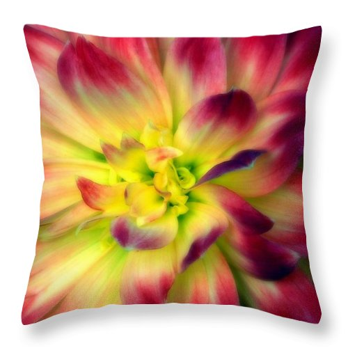 Dahlia Throw Pillow featuring the photograph Magical by Karen Wiles