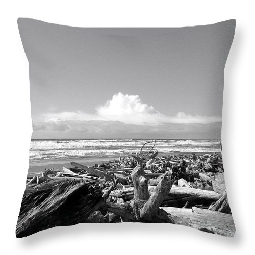 Magnificent Oregon Throw Pillow featuring the photograph Magnificent Oregon by Will Borden