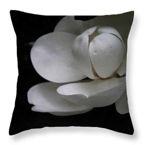 Photography Throw Pillow featuring the photograph Magnolia by Bertie Edwards