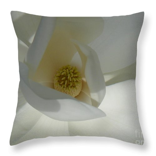 Magnolia Flower Throw Pillow featuring the photograph Christina by Mary Brhel