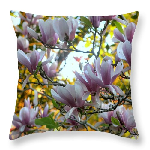 Magnolia Throw Pillow featuring the photograph Magnolia Maidens In A Border by Leanne Seymour
