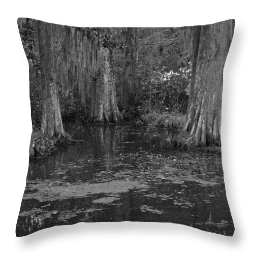 Magnolia Plantation Gardens Throw Pillow featuring the photograph Magnolia Plantation Gardens in Black and White by Suzanne Gaff