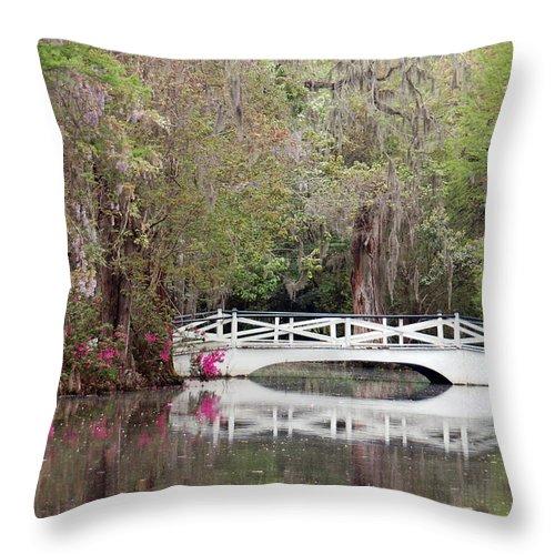 Magnolia Plantation Gardens Throw Pillow featuring the photograph Magnolia Plantation Gardens Series IIi by Suzanne Gaff