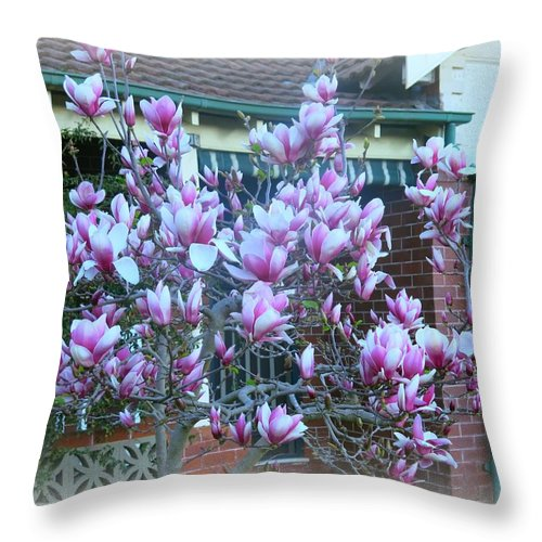 Magnolia Tree Throw Pillow featuring the photograph Magnolias At Home by Leanne Seymour