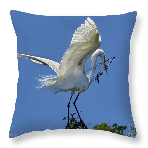 Egret Throw Pillow featuring the photograph Maintaining The Nest by Jennie Breeze