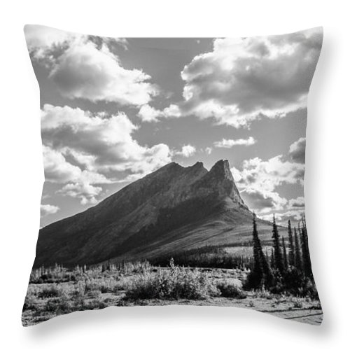 Landscape Throw Pillow featuring the photograph Majestic Drive by Chad Dutson