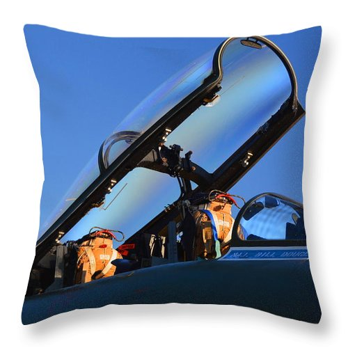 F Throw Pillow featuring the photograph Major Douglass by Richard Booth