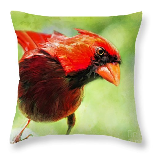 Songbird Throw Pillow featuring the photograph Male Cardinal Close Up - Digital Paint by Debbie Portwood