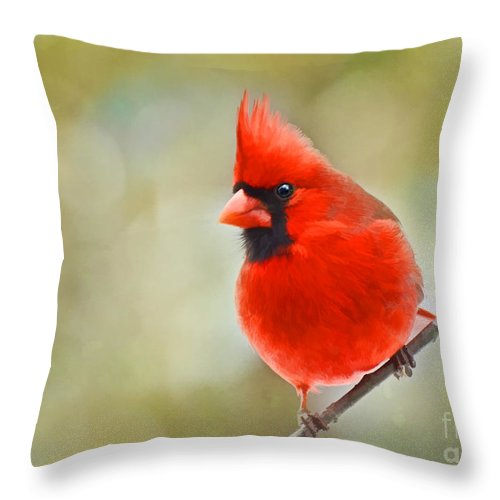 Cardinal Throw Pillow featuring the photograph Male Cardinal On Angled Twig - Digital Paint by Debbie Portwood