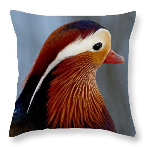 Mandarin Duck Throw Pillow featuring the photograph Mandarin Duck by Bob and Jan Shriner