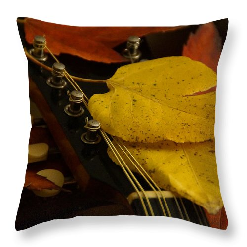 Mandolin Throw Pillow featuring the photograph Mandolin Autumn 6 by Mick Anderson