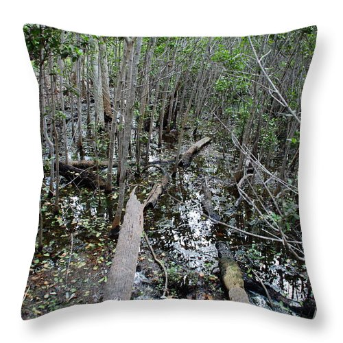 Florida Throw Pillow featuring the photograph Mangrove 001 by Larry Ward