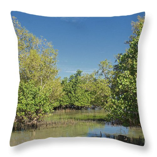 Africa Throw Pillow featuring the photograph mangroves in Madagascar 2 by Rudi Prott