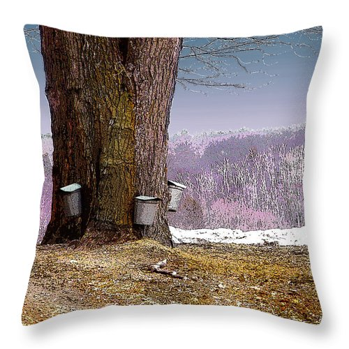 Landscape Throw Pillow featuring the digital art Maple Buckets by Nancy Griswold