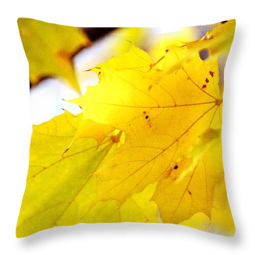 Eaves Throw Pillow featuring the photograph Maple Leaves At Autumn Glory 1 by Jenny Rainbow