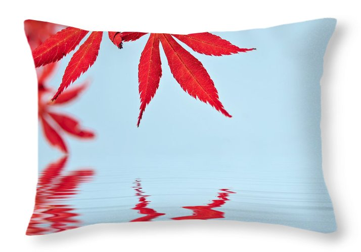 Autumn Throw Pillow featuring the photograph Maple Reflection by Delphimages Photo Creations
