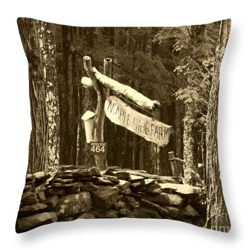 Maple Syrup Throw Pillow featuring the photograph Maple Syrup by Donna Cavanaugh