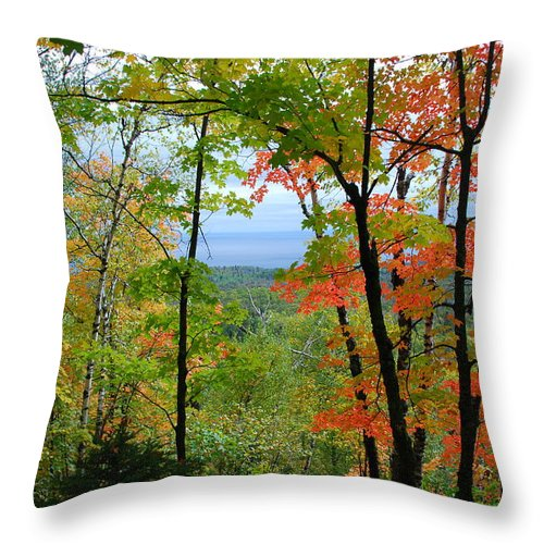 Landscape Throw Pillow featuring the photograph Maples Against Lake Superior - Tettegouche State Park by Cascade Colors