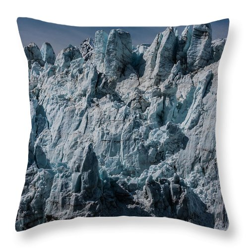 Margerie Throw Pillow featuring the photograph Margerie by Dayne Reast