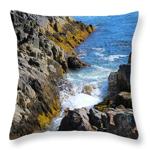 Landscape Throw Pillow featuring the photograph Marginal Way Crevice by Jemmy Archer