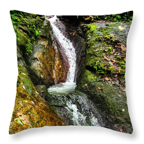 Slide Throw Pillow featuring the photograph Marklackin by Kalvin George