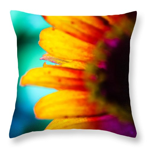Flower Rainbow Bud Throw Pillow featuring the photograph Freedom by Kalvin George