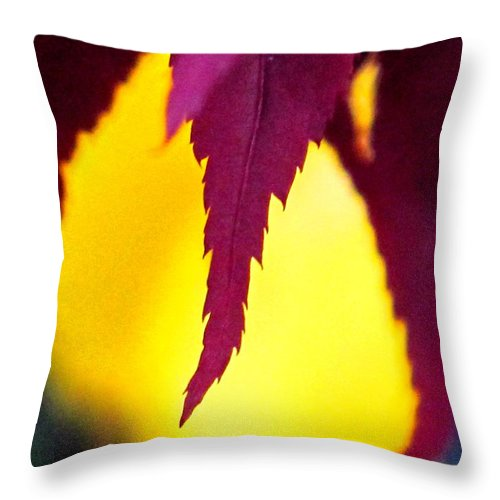 Maroon Throw Pillow featuring the photograph Maroon And Yellow by Ian MacDonald