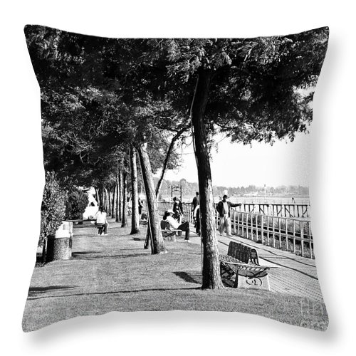 Promenade Throw Pillow featuring the photograph Marriment by David Fabian