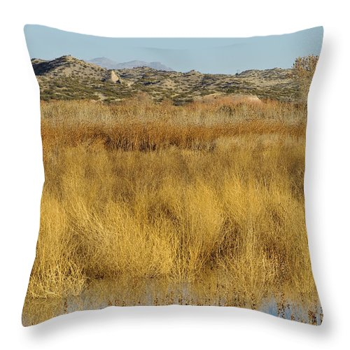 Bosque Del Apache Throw Pillow featuring the photograph Marsh Lands In Wildlife Refuge by John Shaw