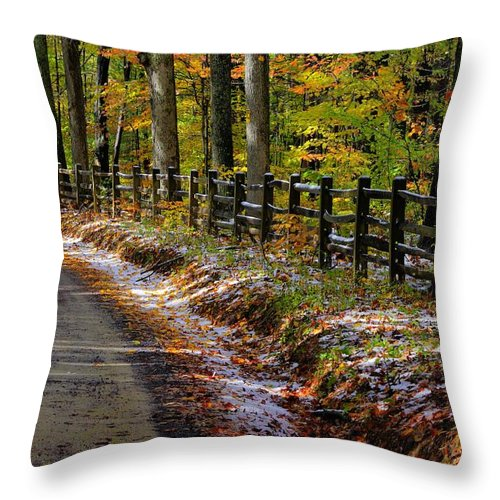Maryland Throw Pillow featuring the photograph Maryland Country Roads - An Early Kiss Of Winter by Michael Mazaika