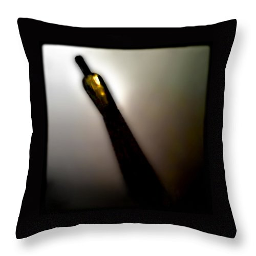 Wine Throw Pillow featuring the photograph Mas Chardonnay by Doug Heslep