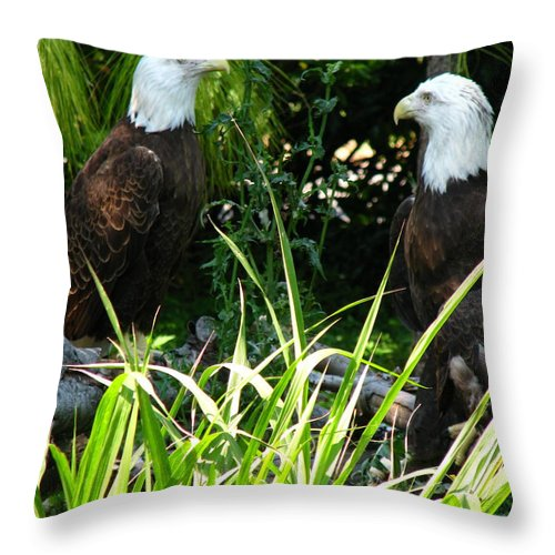 Patzer Throw Pillow featuring the photograph Mates by Greg Patzer