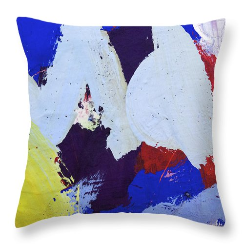 Water Colors Throw Pillow featuring the photograph Max by Richard J Cassato