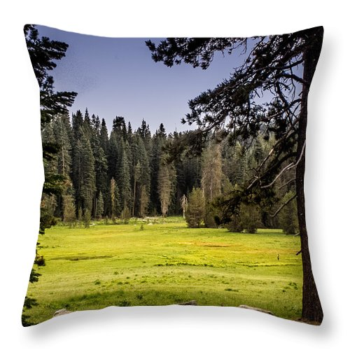 Yosemite Throw Pillow featuring the photograph May I Intrude On Your Meadow by Susan Eileen Evans